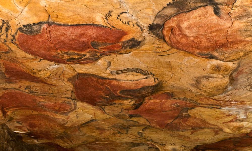 Conservación de Cuevas Gipuzkoa